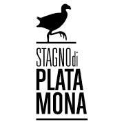stagno logo